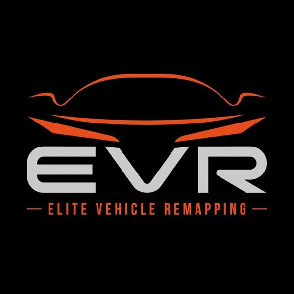 this-is-the-logo-we-created-for-elite-vehicle-rema.jpg