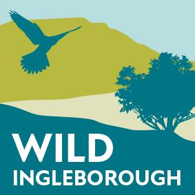 Wild Ingleborough